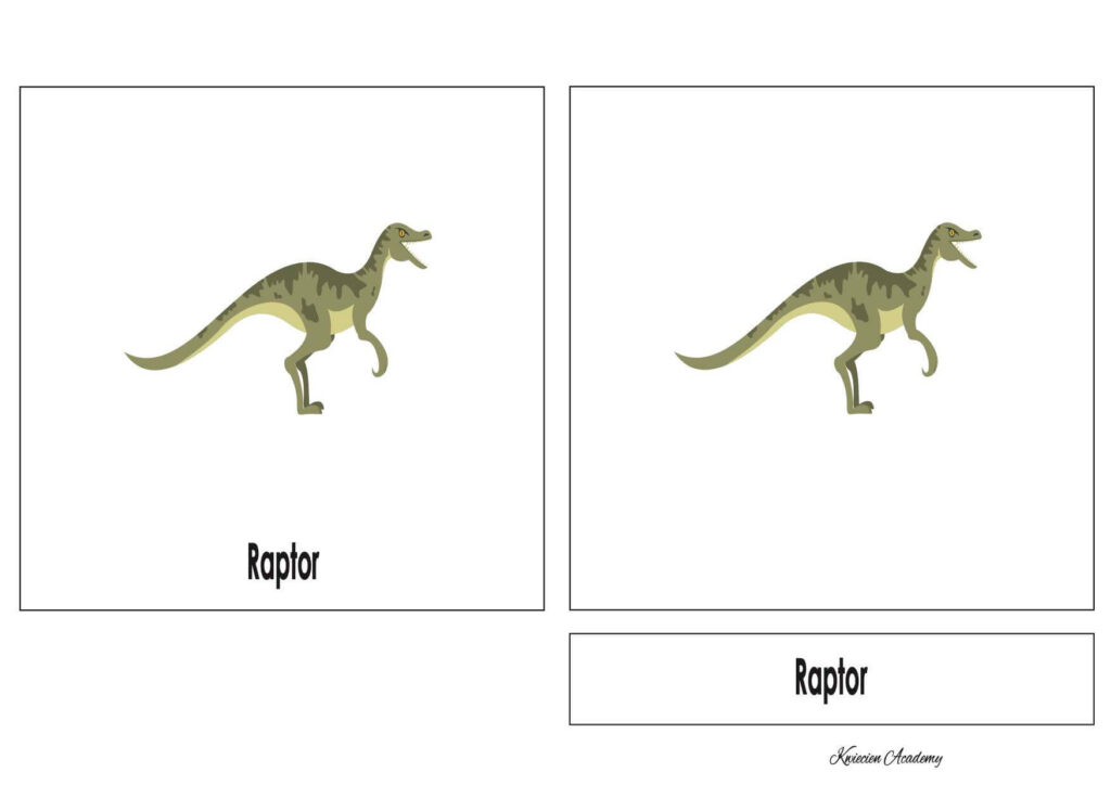 Raptor Montessori