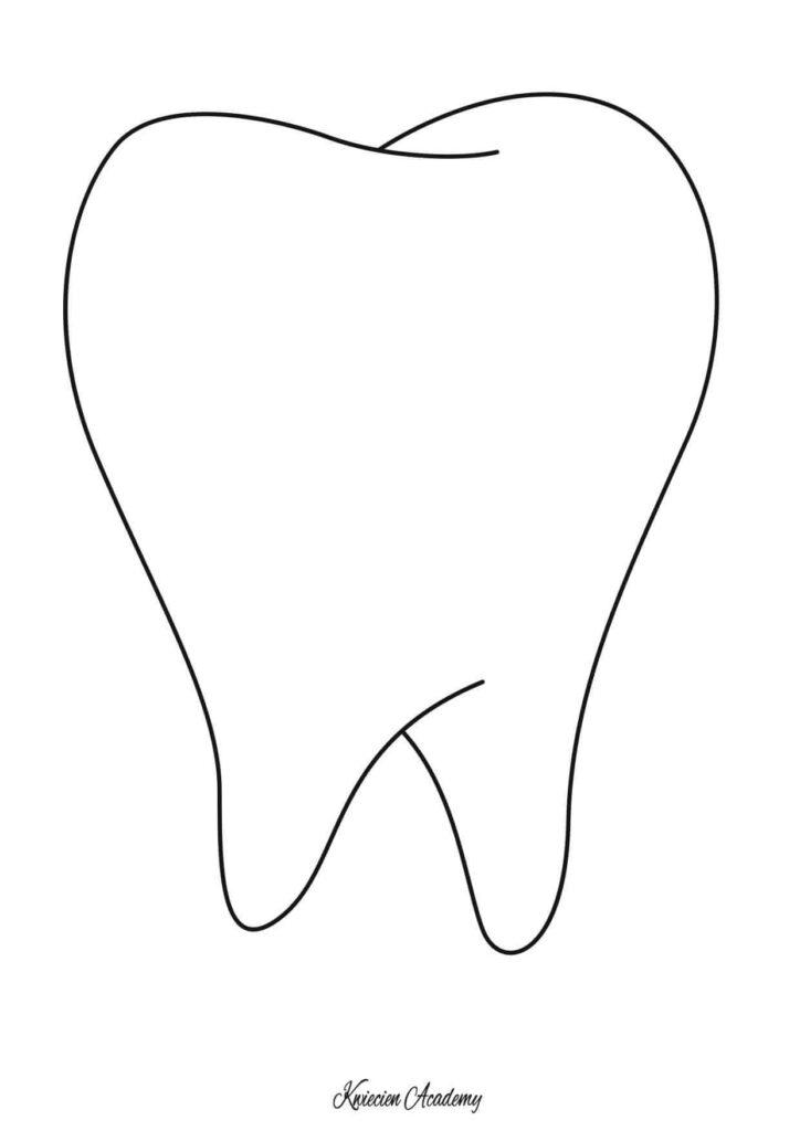 Ząb kolorowanka