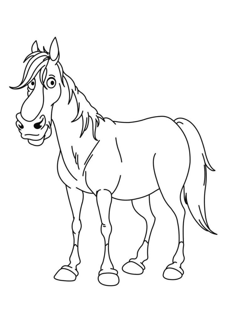 kolorowanki koń