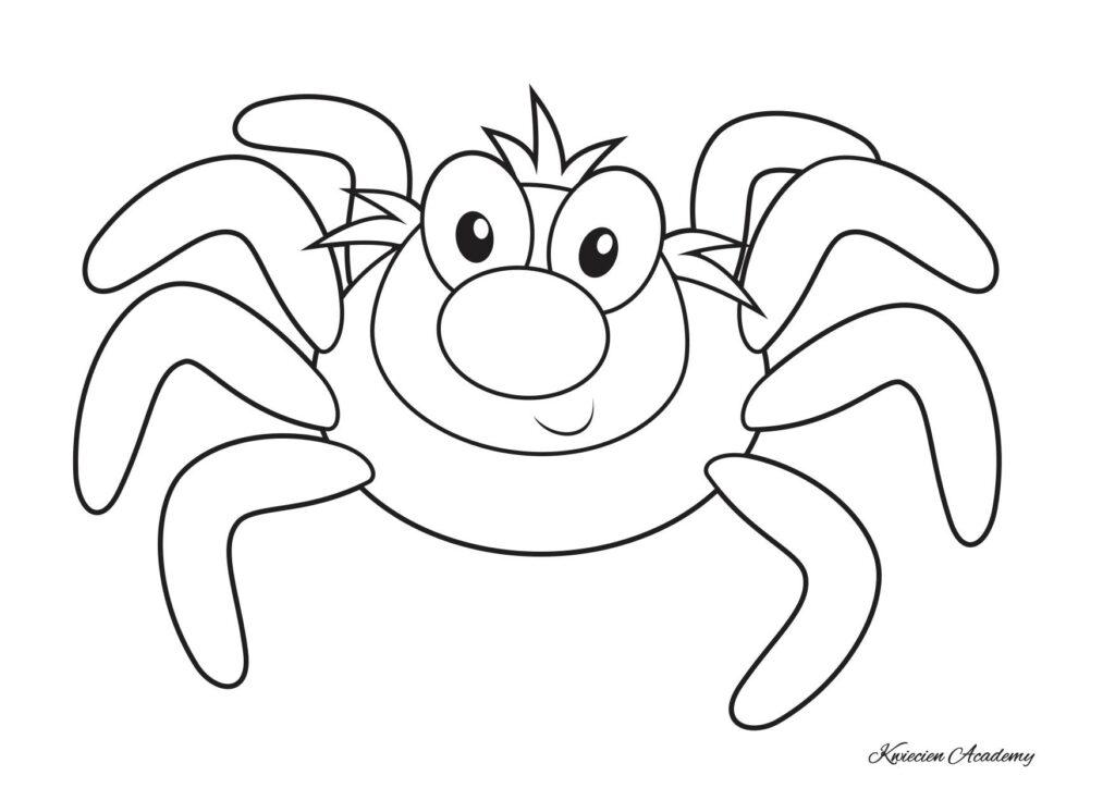 pająk kolorowanki